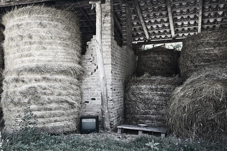 Misa Valley, Ancona