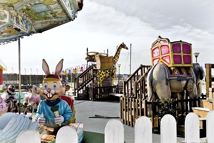 Winter Carousel